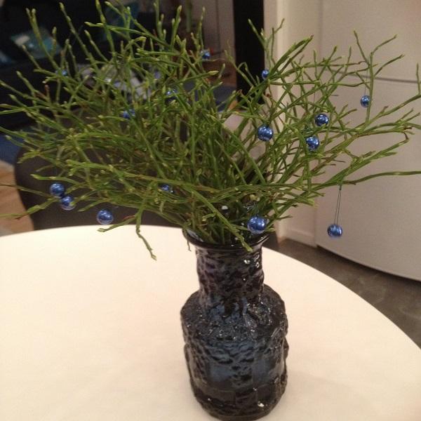 blåbär i va600s