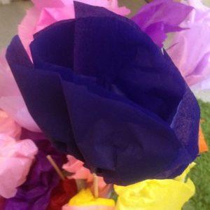 blå silkespappersblomma i närbild